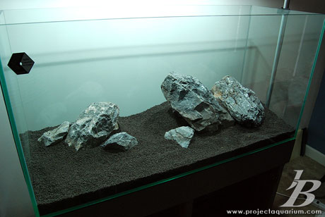 Planted Aquarium - Jason Baliban - Meander - Hardscape