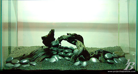 Planted Aquarium - Black Sand Beaches of Wainapanapa - Hardscape