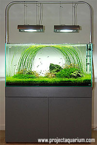 find quality aquarium furniture. as i will say over and ada makes some amazing aquariums again are worth every penny unfortunately all of us people in the us find quality aquarium furniture