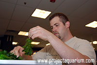 Planted Aquarium Workshops - Jason Baliban